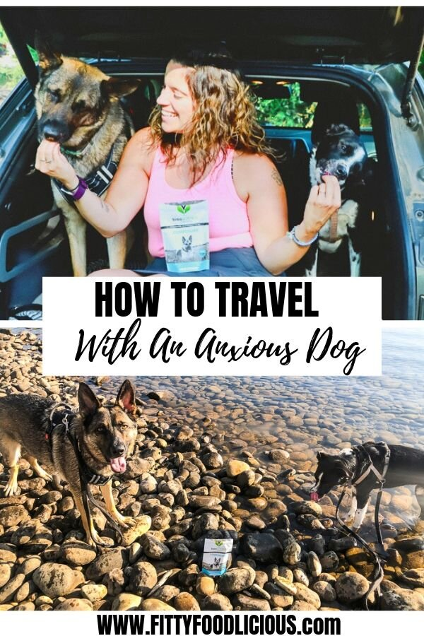 Traveling with dogs, anxiety, travel, separation anxiety, German Shepherd, Border Collie, dogs, traveling with anxious dogs, Sacramento blogger, VetriScience, dog treats, anti-anxiety, Jeep, dog harness, grief