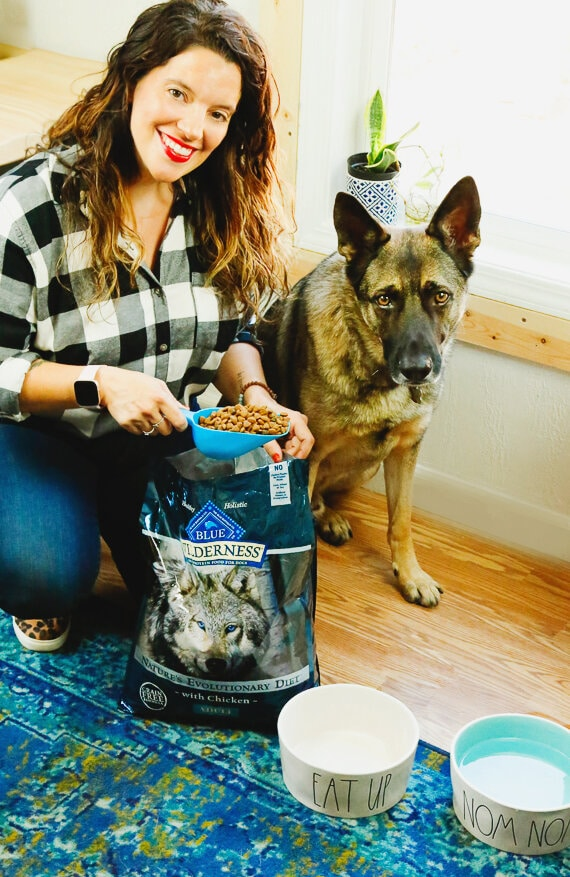 Blue Dog Food, dogs, BLUE, veterans, military, support dogs, service dogs, dog food, Walmart, german shepherd, border collie